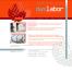 Homepage-Design für Facharzt